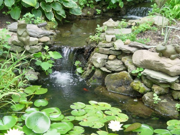 water feature present in your backyard brings out the best in your