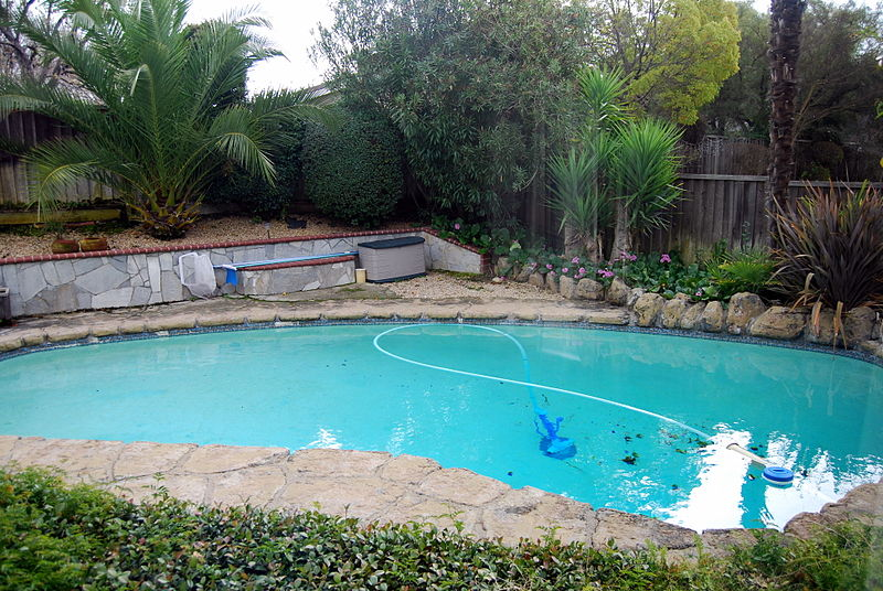 Inground pools what to know before building grandview for Pool landscaping on a budget